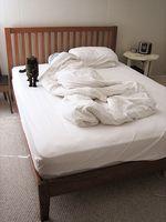 guestroom, san francisco ca